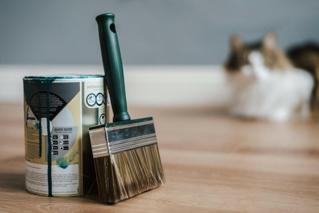 Peinture et rénovation logement